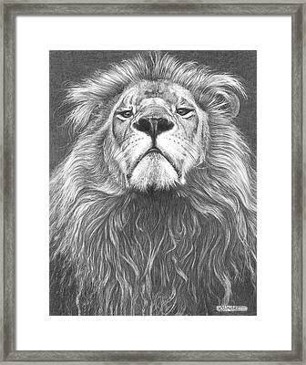 Head Of The Family Framed Print by Kevin Hayler