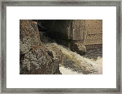 Head Of The Tide Flood Framed Print