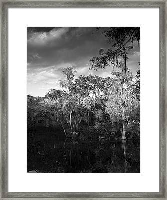 Head Waters Framed Print
