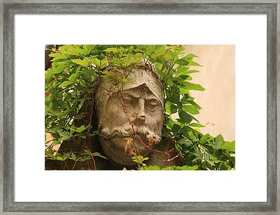 Head With Vines Framed Print by Michael Henderson