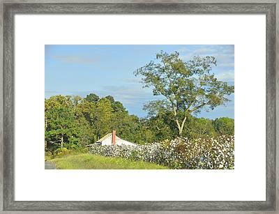 Headed Out The Old Road Framed Print
