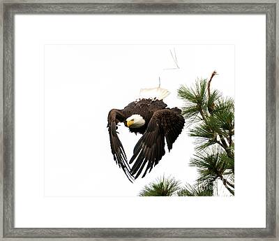 Headed To The River Framed Print
