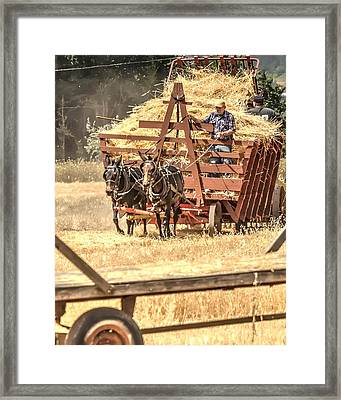 Headed To The Thresher 2 3423 Framed Print by Jerry Sodorff