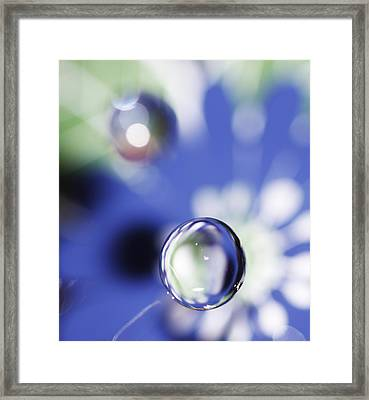 Heading Down Framed Print by Rebecca Cozart