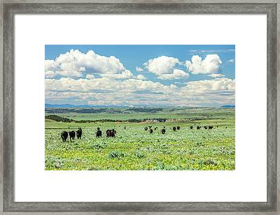 Heading Home Framed Print by Todd Klassy
