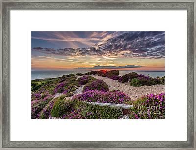 Headon Hill Sunset Framed Print