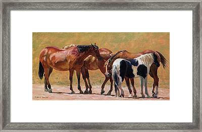 Heads Or Tails Framed Print by Bonnie Mason