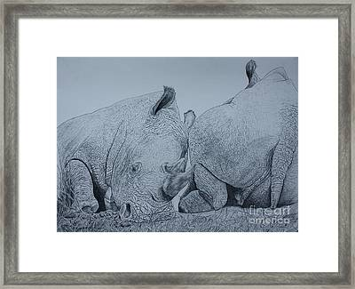 Heads Or Tails Framed Print