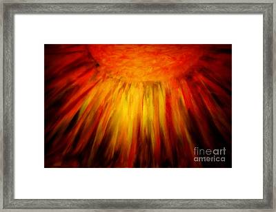 Healing Balm Of The Sun Framed Print