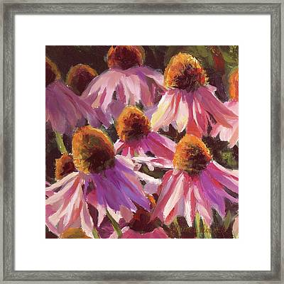Healing Light Echinacea Cone Flowers Framed Print by Karen Whitworth