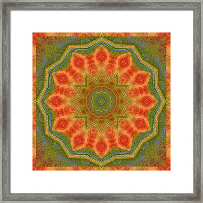 Healing Mandala 14 Framed Print by Bell And Todd