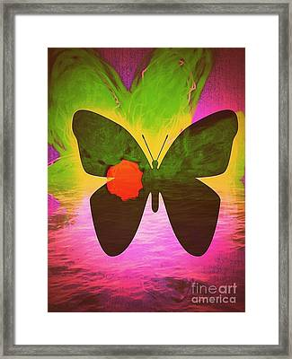 Healing Of The Butterfly Framed Print