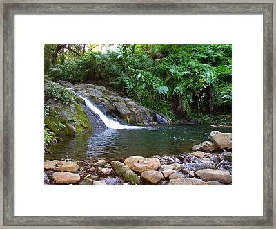 Healing Pool - Maui Hawaii Framed Print