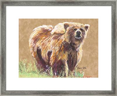 Healthy Brown Bear Framed Print