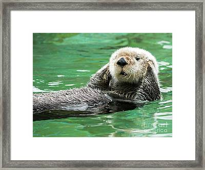 Hear No Evil Framed Print by Mike Dawson