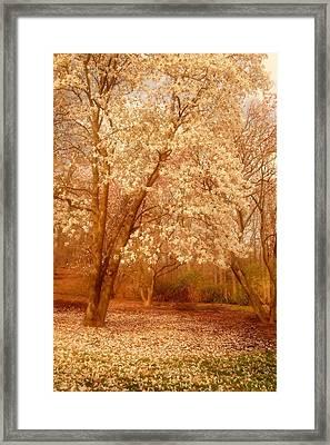 Hear The Silence - Holmdel Park Framed Print by Angie Tirado