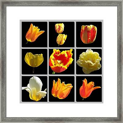 Heart Framed Print by David and Lynn Keller