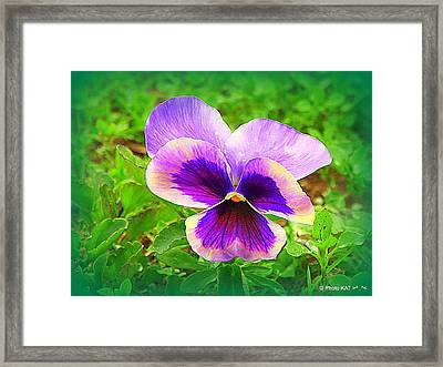 Heart Ease II Framed Print