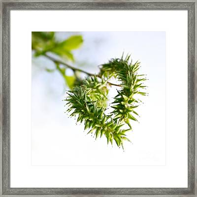 Heart In Nature Framed Print