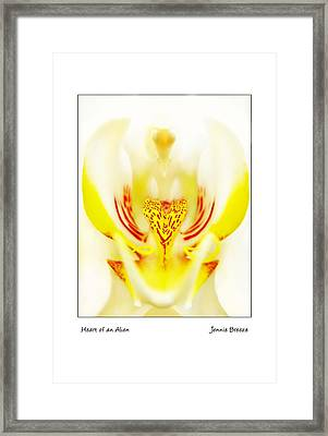 Framed Print featuring the photograph Heart Of An Alien by Jennie Breeze