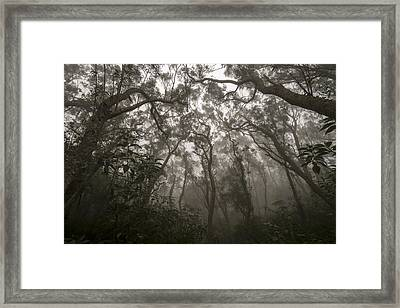 Heart Of Darkness Framed Print