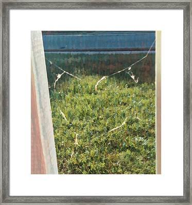 Heart Of Silk Framed Print by Jason Joseph