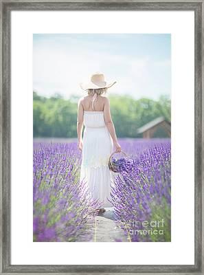 Heart Of Summer Framed Print