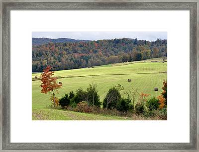 Heart Of The Country Framed Print by Jan Amiss Photography