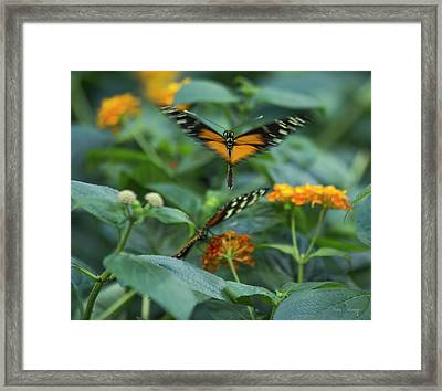 Heart Of The Matter Framed Print by Betsy Knapp