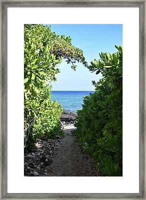 Framed Print featuring the photograph Heart Of The Path by Pamela Walton
