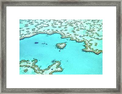 Framed Print featuring the photograph Heart Of The Reef by Az Jackson