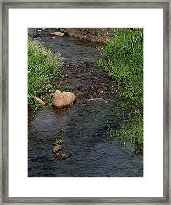Heart Of The Stream Framed Print