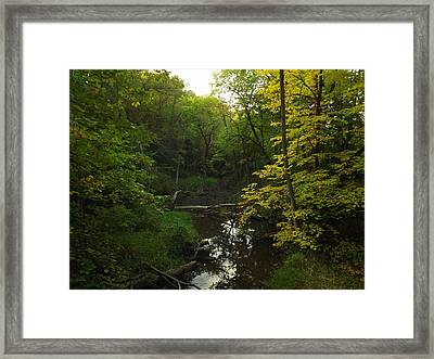 Framed Print featuring the photograph Heart Of The Woods by Viviana  Nadowski