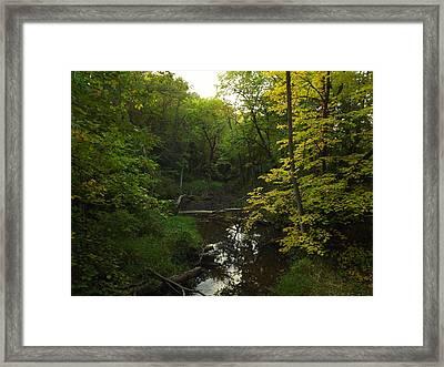 Heart Of The Woods Framed Print