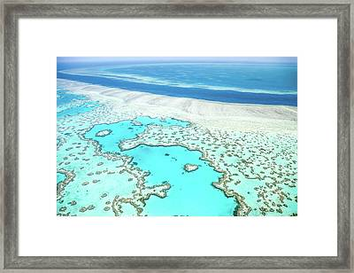 Framed Print featuring the photograph Heart Reef by Az Jackson
