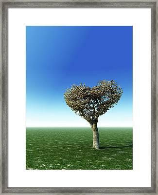 Heart Shape Tree Framed Print