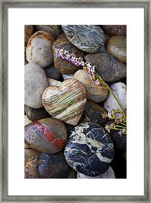 Heart Stone With Wild Flower Framed Print by Garry Gay