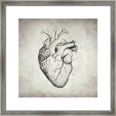 Framed Print featuring the drawing Heart by Taylan Apukovska