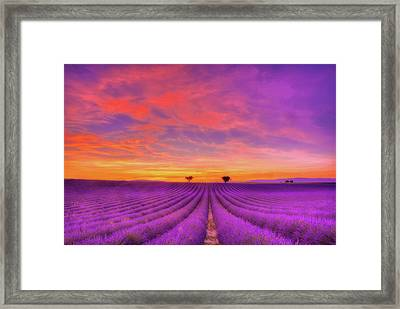 Heart To Heart Framed Print by Midori Chan