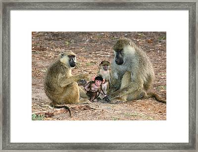 Heart Warming Framed Print by David Wahome