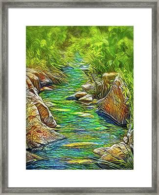 Heartbeat Of A Stream Framed Print