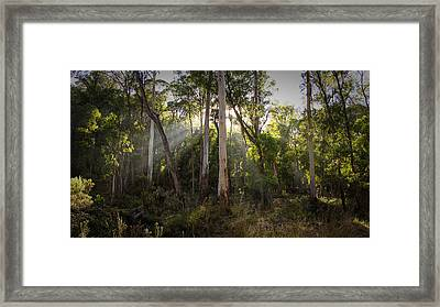 Framed Print featuring the photograph Heartland by Tim Nichols