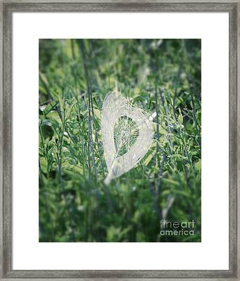 Hearts In Nature - Heart Shaped Web Framed Print