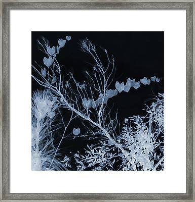 Hearts Of Nature Framed Print