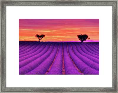 Hearts Of Rainbow Framed Print by Midori Chan