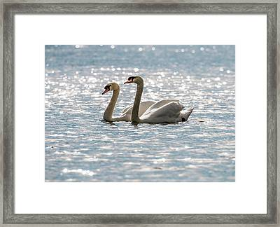 Heather And Keith Framed Print