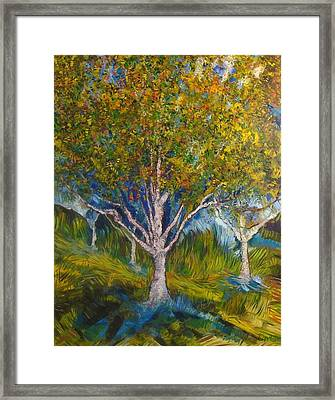 Heather Farms Treescape Framed Print