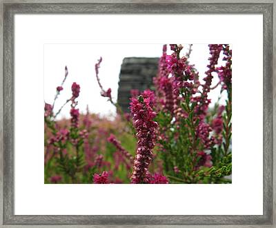 Heather Framed Print by Greg Weflen