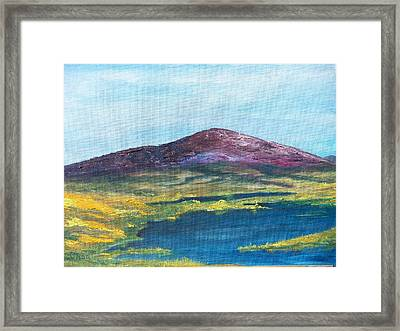 Heather Mountain Framed Print by Conor Murphy