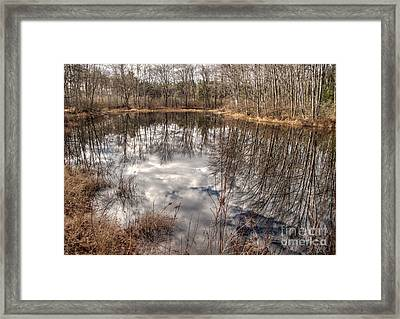 Heaven Below Framed Print by Betsy Zimmerli